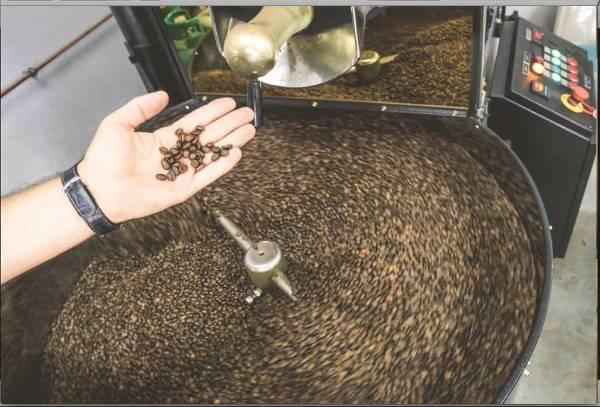 tommycafe kawa dla koneserów