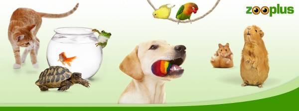 Oferta zooplus zaspokoi potrzeby każdego zwierzaka - zdjęcie z fanpage'a sklepu na Facebooku.